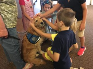 children petting comfort dog immanuel lutheran church joplin missouri what to expect sunday service children welcome