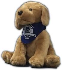 Happy 8th Birthday Comfort Dogs 2
