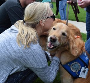 jackson comfort dog being hugged by woman