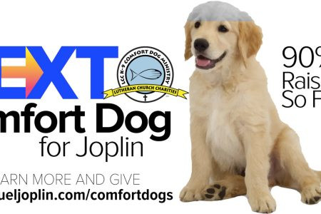 Fundraising Nearly Complete For Joplin's Next Comfort Dog 3
