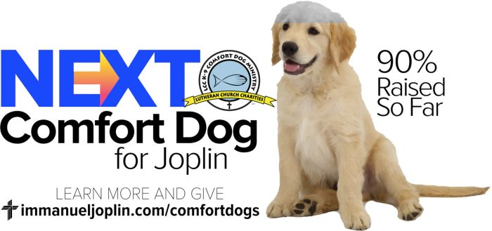 Fundraising Nearly Complete For Joplin's Next Comfort Dog 1