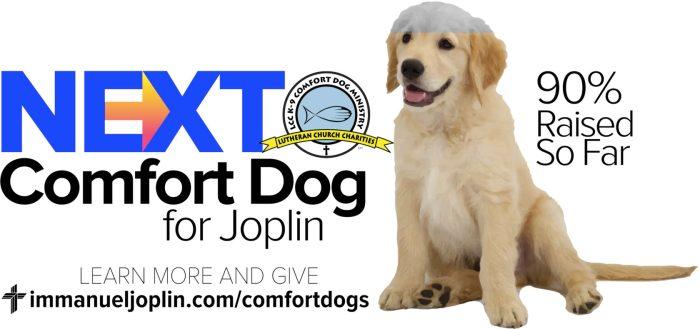 Plans For Joplin's Next Comfort Dog 1