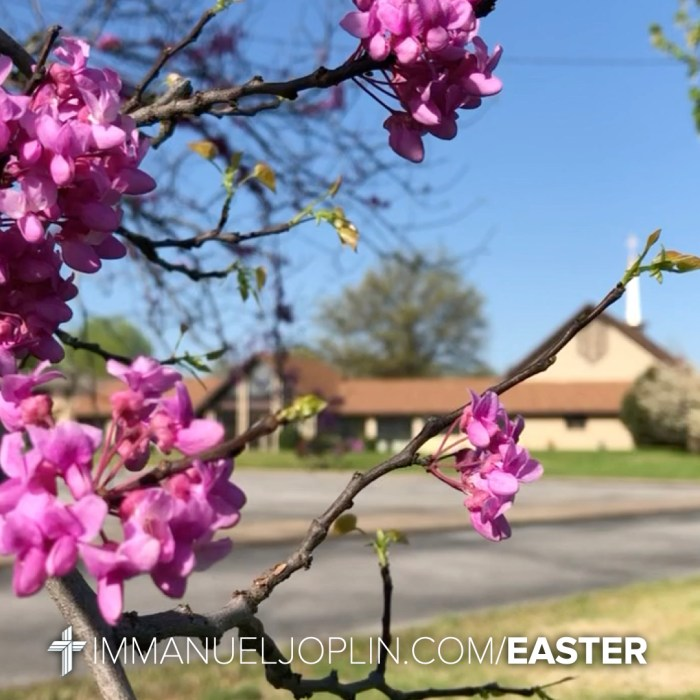 Easter at Immanuel 16