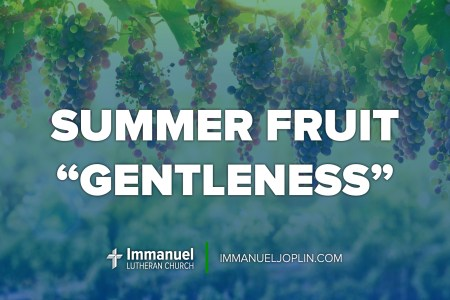 summer fruit gentleness. fourteenth sunday after pentecost. immanuel lutheran church lcms. Joplin, missouri.