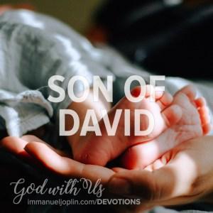 Son of David. God With Us December 21 Advent Devotion. Immanuel Lutheran Church LCMS. Joplin Missouri.