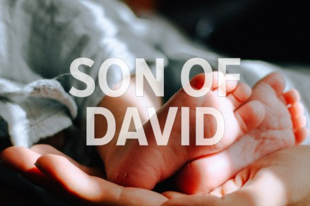 Son of David. God With Us December 21 Advent Devotion. Immanuel Lutheran Church LCMS. Joplin Missouri.