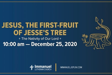 Jesus the First-Fruit of Jesse's Tree. Christmas Day 2020. Immanuel Lutheran Church LCMS. Joplin Missouri.