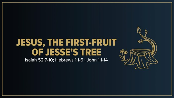 Jesus the First-Fruit of Jesse's Tree. Christmas Day 2020. Immanuel Lutheran Church LCMS. Joplin Missouri.