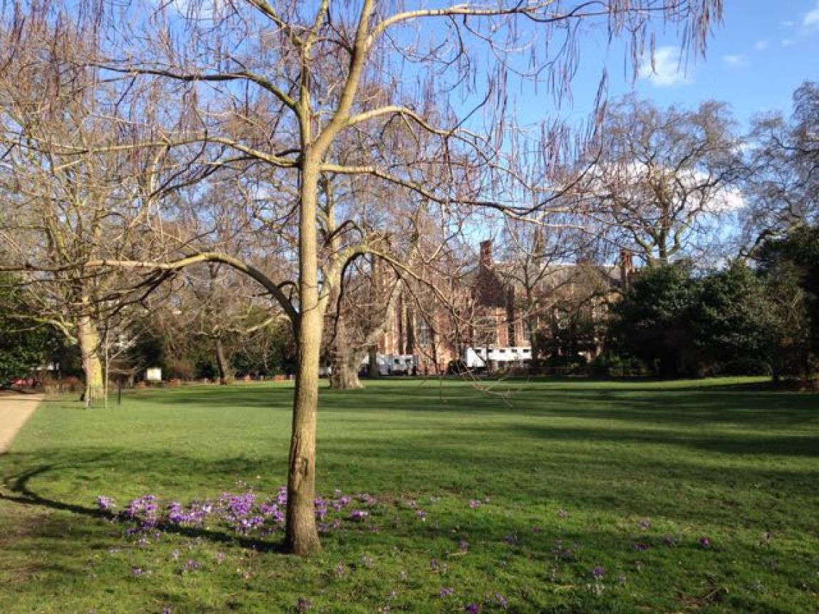 London_Lincoln' Inn Fields