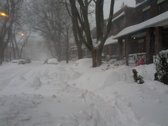Vos enfants vont adorer l'hiver