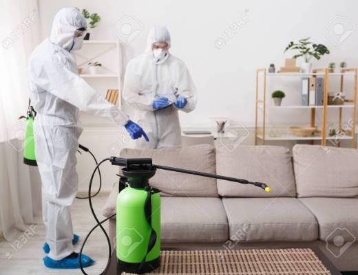 Débarrassez-vous des insectes nuisibles à la maison!
