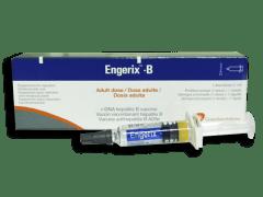 Engerix-B Hepatitis B Vaccine