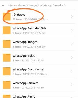 download a WhatsApp video Status