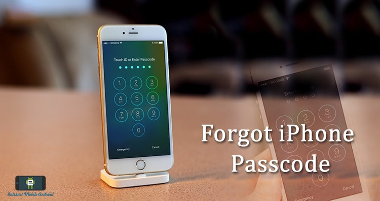 Forgot iPhone or iPad Passcode