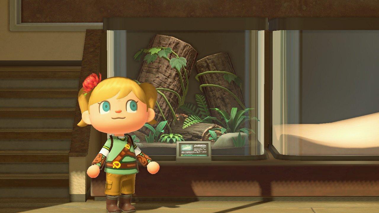 Living Room Ideas Animal Crossing New Horizons - Hd Football on Animal Crossing New Horizons Living Room  id=29734