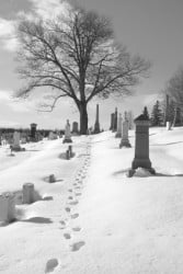 Winter Funeral image