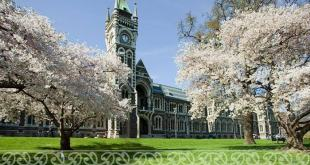 Famous Universities in New Zealand