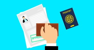 Visa Application Process for Studying in New Zealand