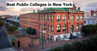 Best Public Colleges in New York
