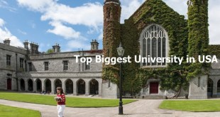 Top Biggest University in USA