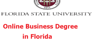 Online Business Degree in Florida