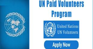 United Nations Internship
