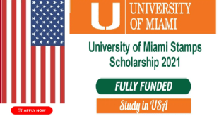 University of Miami Stamps Scholarship in USA