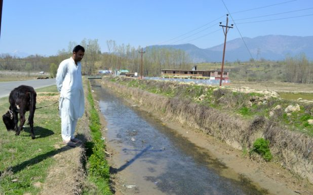 Mohammad Amin Lone, a farmer in Nutnoosa-Kupwara area of Kashmir, is worried that the Lal Kul stream holds just a trickle, which would be insufficient to irrigate rice fields [image by: Athar Parvaiz]