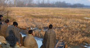 The Hokersar wetland in Kashmir [Image by: Athar Parvaiz]