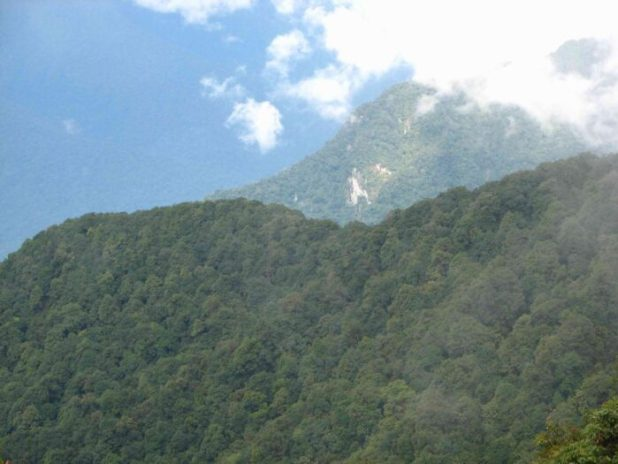 Dibang Valley forests : The Dibang and Lohit valleys contain some of the last large contiguous tracts of tropical, subtropical and temperate forests in the country, rich in wildlife. These will be seriously fragmented by multiple proposed large hydropower projects.