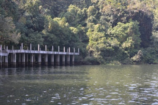 Illegally constructed 'skywalk' inside the Dhamapur Lake and Wetland