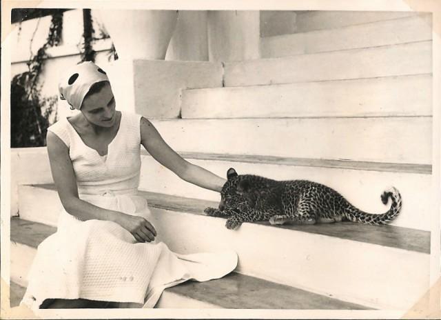 baba leopard 1