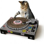 Cat Scratching Deck