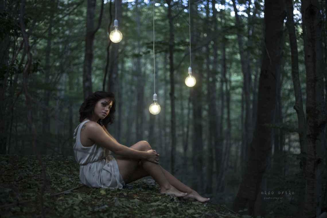 forest-fantasy_15075315717_o