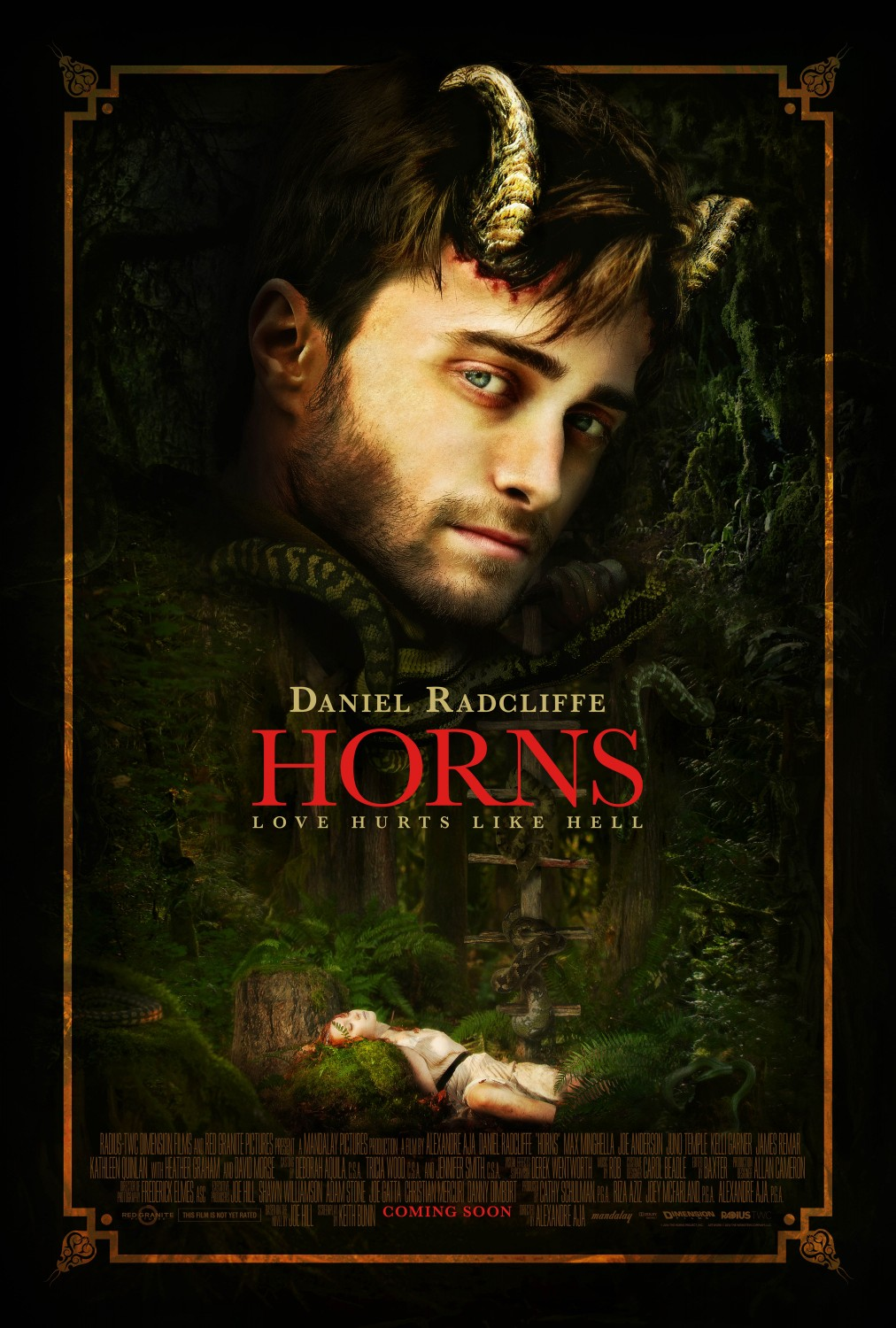 Extra Large Movie Poster Image for Horns
