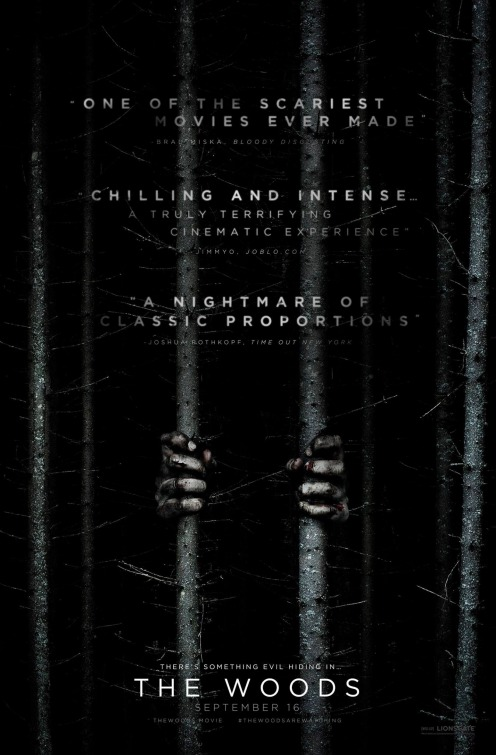 Poster do filme In the Woods