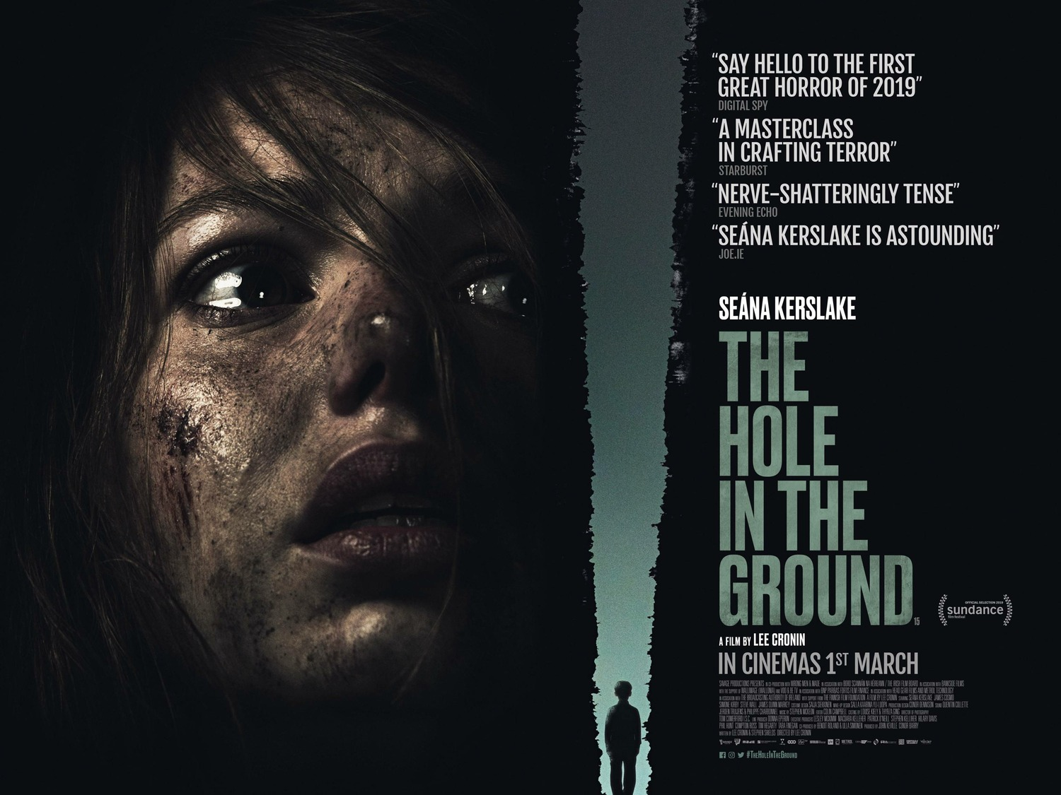 Extra Large Movie Poster Image for The Hole in the Ground (#2 of 2)