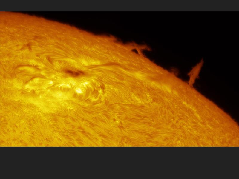 Solar Limb Prominence and Sunspot