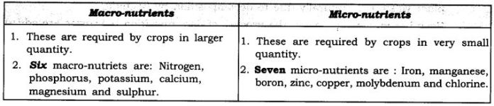 ncert-solutions-for-class-9-science-improvement-in-food-resources-1