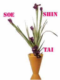 Ikebana Arte Japones Del Arreglo Floral Bujinkan ôkami