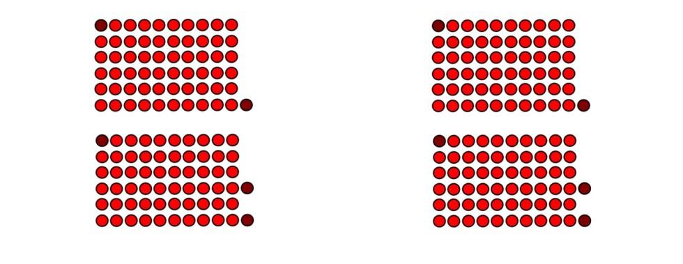 Dos manípulos adyacentes ordenados en columnas.