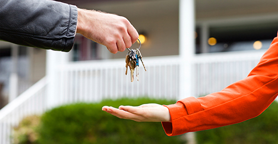 Real estate sales and consulting services