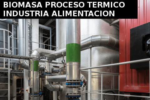 Biomasa Industrial para procesos termicos