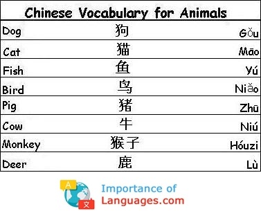 Chinese Words for Animals