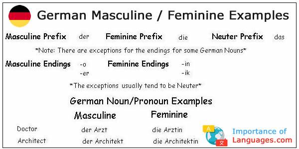 German Masculine Feminine Examples