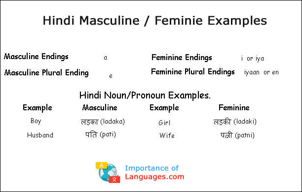 importance of hindi language in hindi