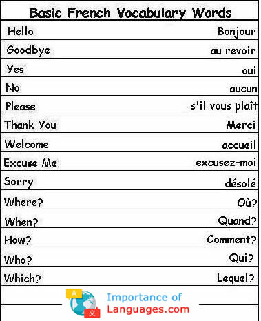 Basic French Words