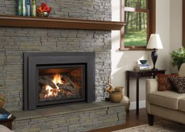 Regency Liberty L540EB Large Gas Insert