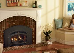 Regency Excalibur® EX-U31 Medium Gas Insert