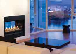 Echelon See-Thru Direct Vent Gas Fireplace by Majestic Products